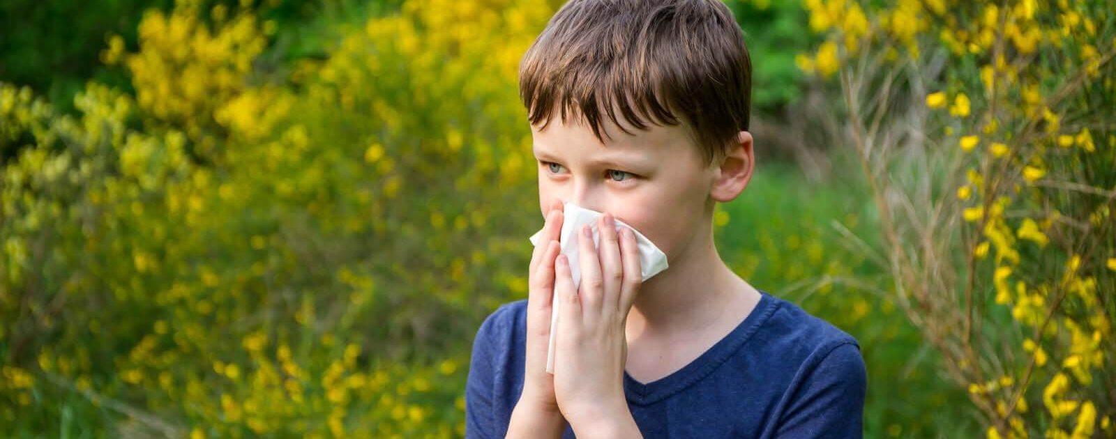 Junge putzt sich die Nase wegen Fließschnupfen, entstanden durch Heuschnupfen.