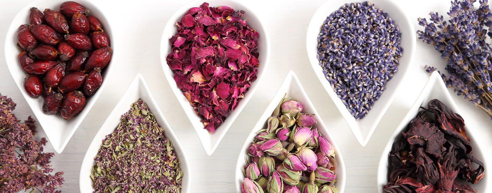 Aromablüten, um den Geruchssinn zu trainieren