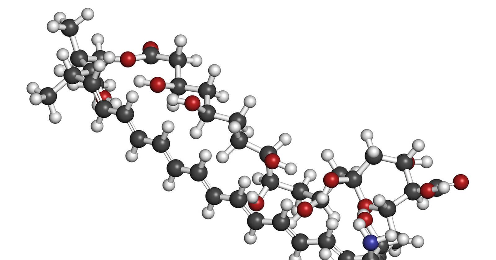 Bei der Behandlung von Nasenpilz kommen Anti-Pilzmittel mit Amphotericin B zum Einsatz.
