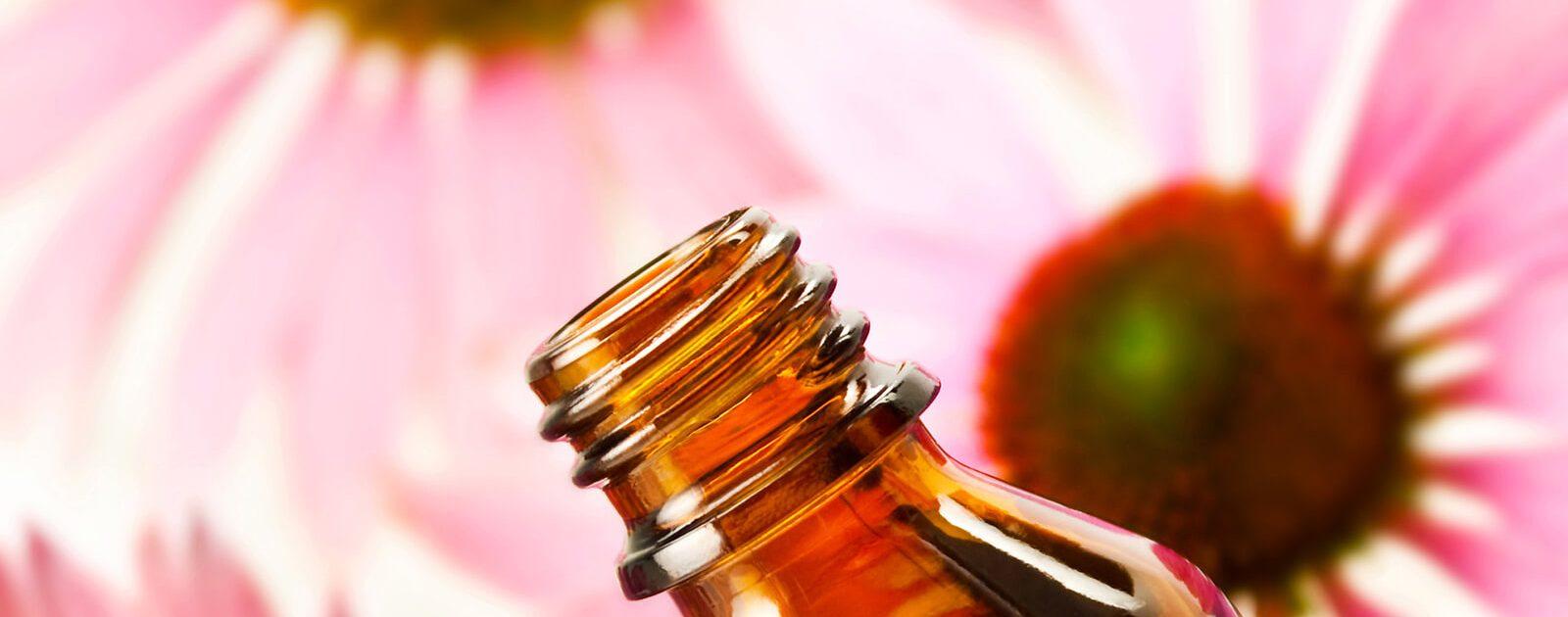 Aus den Blüten der Echinacea (Sonnenhut) werden Tabletten gegen Schnupfen hergestellt.